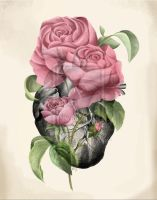 Roses on Heart by Sugarsop