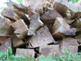 Firewood by nwalter