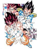 Dragonball Z- Color Goku VS Vegeta V2 by TriiGuN