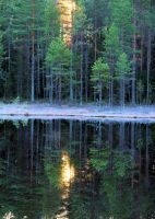 reflection by KariLiimatainen