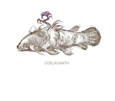 Coelacanth by sprezzaturan
