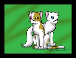 Cloudtail and Brightheart by katribou