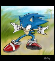 Sonic by idiotbassist62090