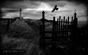 The Storm Gate II by l8