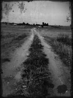 Path by Indissolubiles