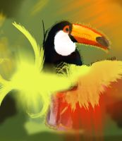 Toucan by amyleeboy16