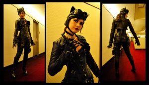 Steampunk Catwoman by Oriana132