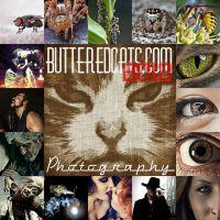 2012 by ButteredCats