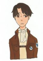 levi by MartiniCup