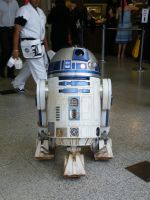 R2-D2 by AkraruPhotography