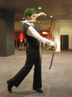 OP:SW Zoro 1 by evilfuzzle2
