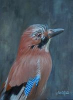Portrait of a Jay by huckerback6