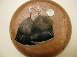 Turkey Feather Earrings 3 by TheNewCoyote