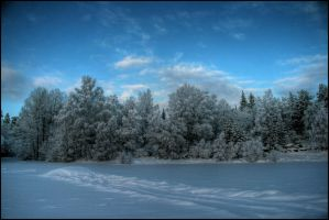 Winter has arrived by Chribba
