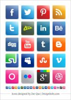 Free Vector Social Media Icon Pack 2012 by Designbolts
