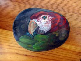 Macaw Rock by Feyoka