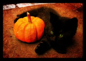 Me 'n My Pumpkin by Jenna-Rose