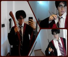 Harry Potter by PincaIoIda