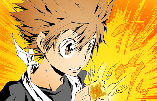 Tsuna Flame of Ring by Potalas