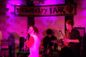 Strawberry Fair Benefit Gig by BlastedFen