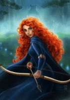 Brave: Merida by daekazu