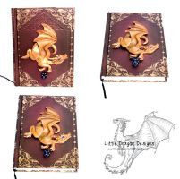 Dungeon Master's Book by LittleDragonDesigns