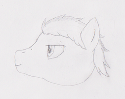 Night Cloud (Head, side-view) by Zhooves