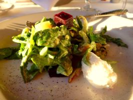 beet salad by agent229