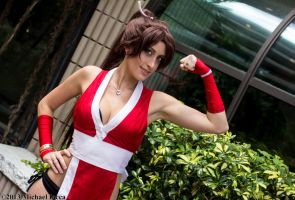 Mai Shiranui 3 by Insane-Pencil