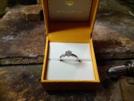 Solitaire ring by Debals
