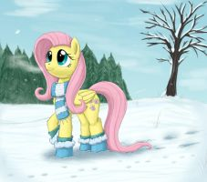 winter fluttershy by otakuap