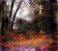 Premade Forest Combo by Children7