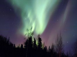 Aurora, March 9-10th 2011 by Line-of-Birds