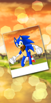 Sonic - Photograph by SonicRemix
