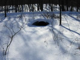 651 - hideout by WolfC-Stock
