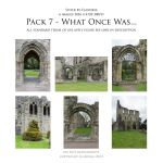 Pack 7 What Once Was by Elandria