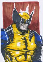 Wolverine Portrait by Arddy24