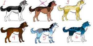 OPEN Canine bidding set by TheFurryFriend