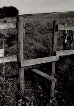 Stile by iakwbos