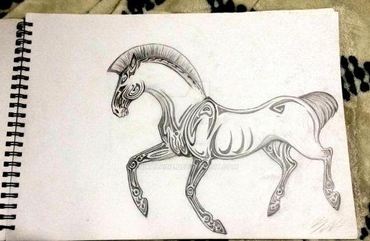 Shapes of a horse by Nikalaine