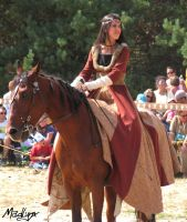 Medieval dance on horses4 by madlynx