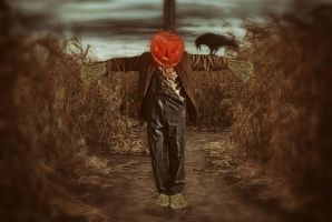 Scarecrow In A Cornfield by Wimmeke63
