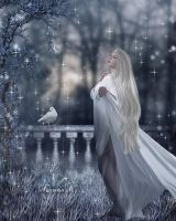 WINTER DREAMS by KerensaW