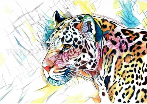 Colorful Jaguar by Vanory