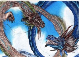 Dragons.. fighting??? by Himeviti