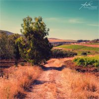The long and winding road by klapouch
