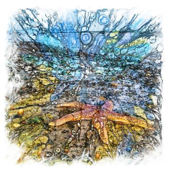 The Atlas of Dreams - Color Plate 199 by RichardMaier