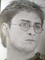 Harry potter by doguinha