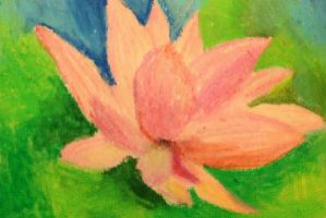Water Lily by likesinkingships
