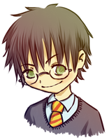 HP - Harry by theEuphorie